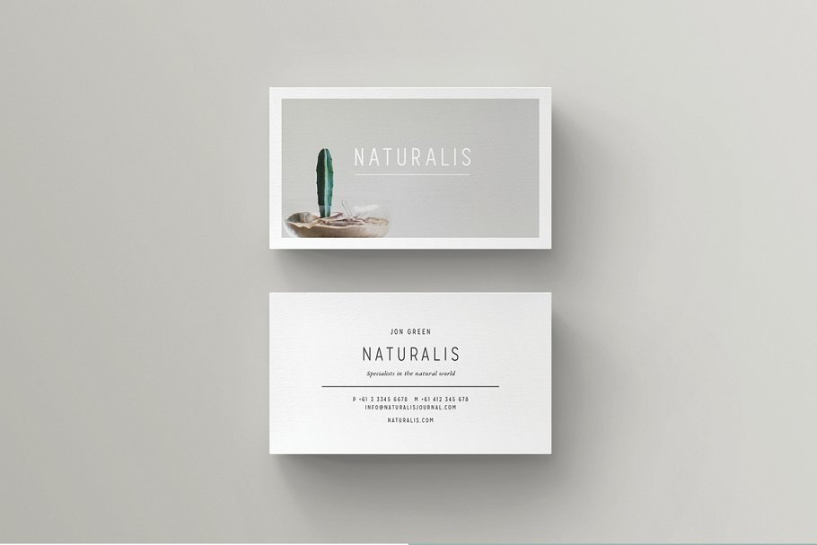 mẫu danh thiếp tối giản của NATURALIS